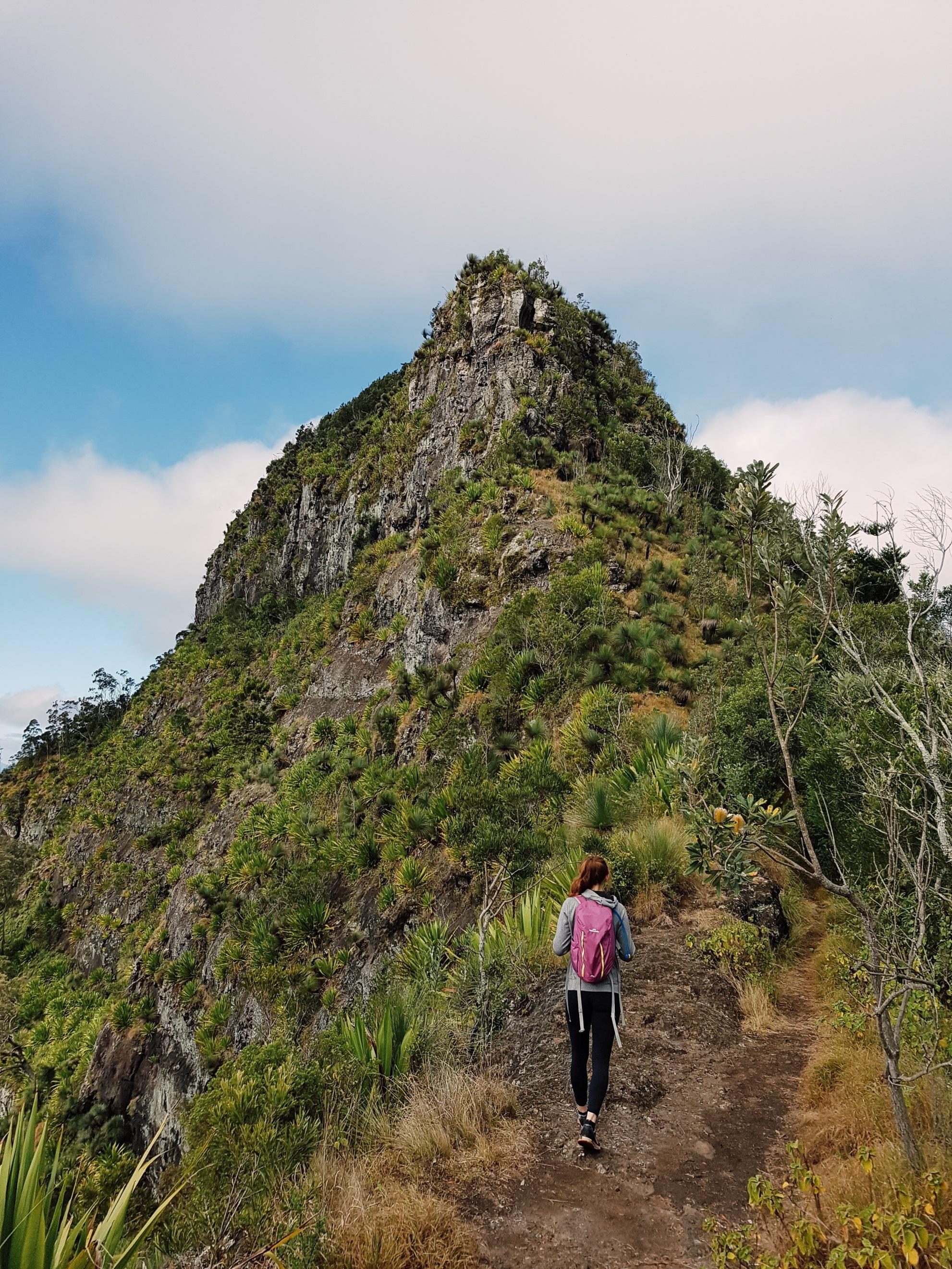Mt Cordeaux & Bare Rock, Main Range NP.